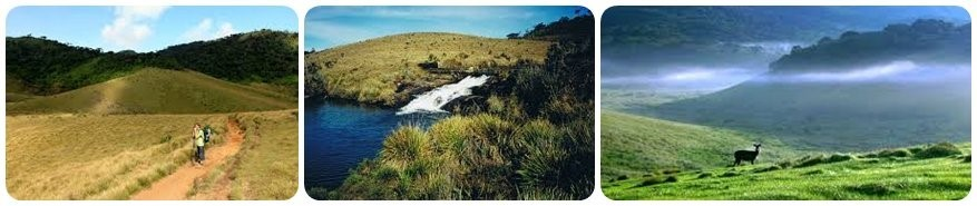 Ceylon Highlights - Tag 5 - Landschaft - Horton Plains National Park